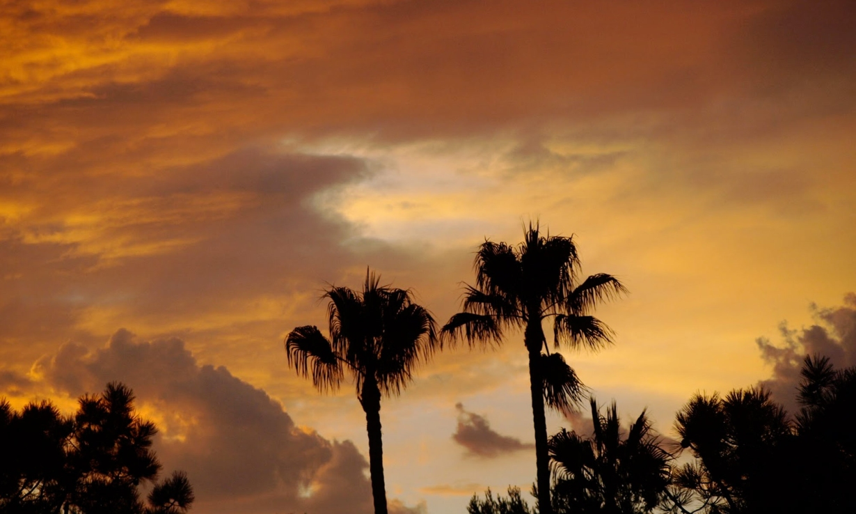Header_IMAGE_Sunset