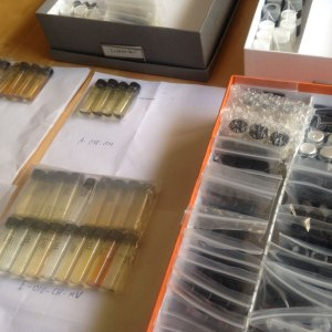 Vials ready to be re-labeled.
